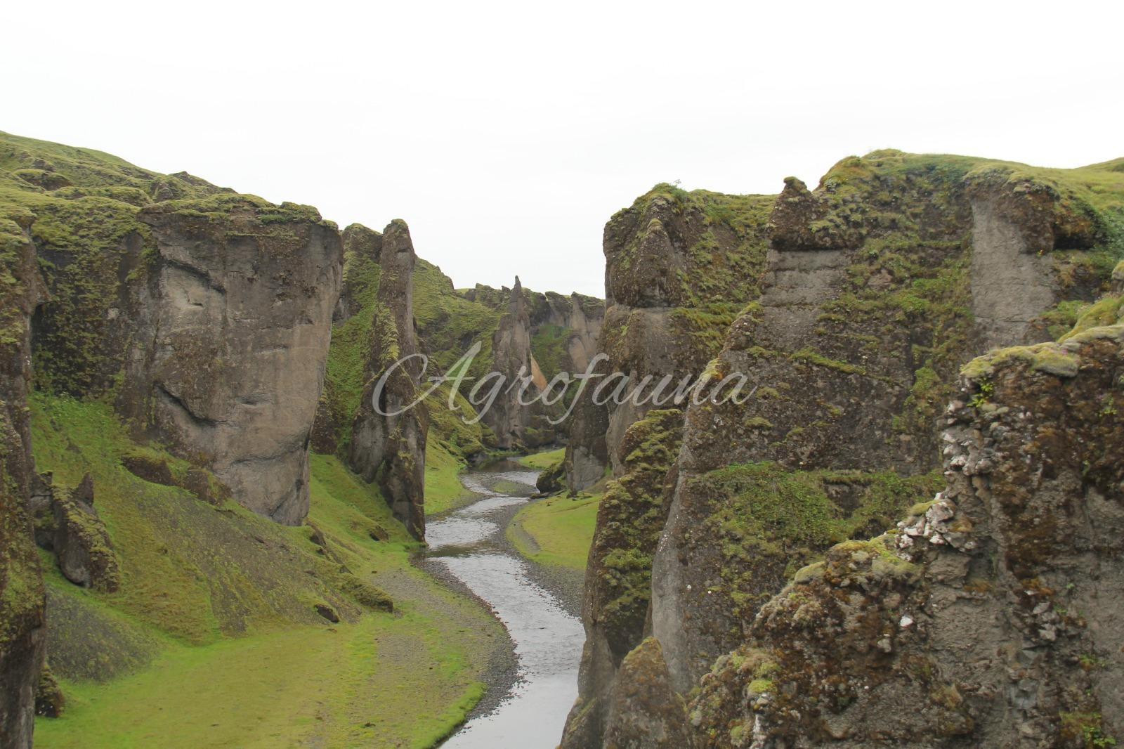 Alla scoperta dell'Islanda!